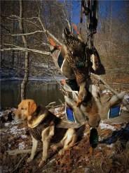 DT Systems Master Retriever 1100 | gun dog outfitters | gundogoutfitter.com