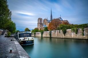 Notre Dame Katedrali, Paris, Fransa.