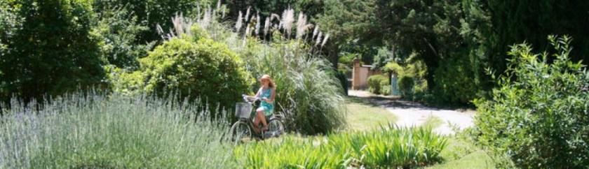 En vacker trädgård till ett hus vi hyrde i södra Frankrike. Foto av Gunilla Larsdotter för Gunillaord blogg.