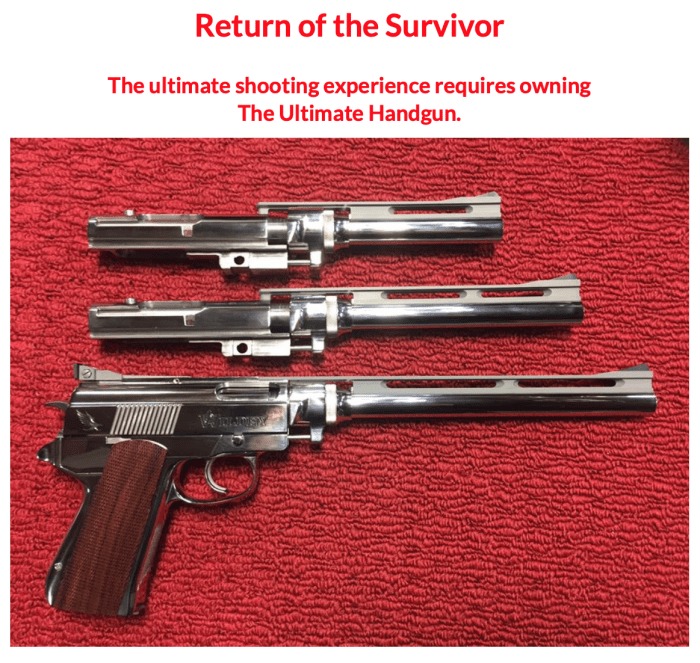 Return of the Survivor