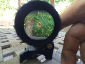 magnifier in action