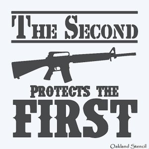 "Image of an AR-15 with the words ""The Second Protects the First"""