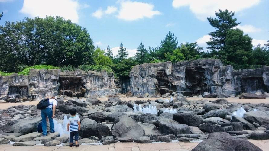 いせさき市民の森公園は岩場と噴水がダイナミックな自然豊かな公園!【群馬】おすすめスポット