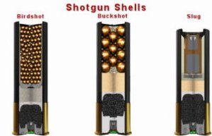 Shotgun Recoil Calculator