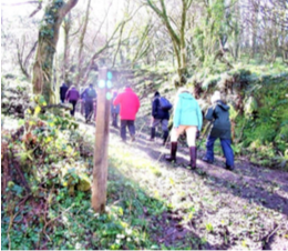 COTEHELE CIRCULAR V1 (April) – Walk and Talk