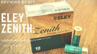 Review of the Ely Zenith pattern test