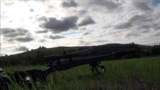 500 yard bunnys! Steel and Varmints Tikka T3 Lite .243 Win