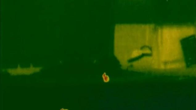 Little Spring Bunnies Pulsar Quantum XQ30 Thermal Night Vision