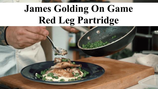 Partridge Thumbnail
