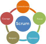 The Scrum Values (color)