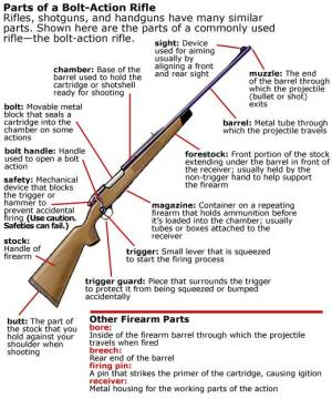 And My Favorite Long Gun is – The Bolt Action Rifle