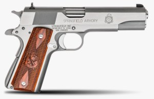 The Springfield Is a Fine Example of a Modern Government Model 1911A1