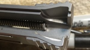 Guide Rod and Recoil Spring
