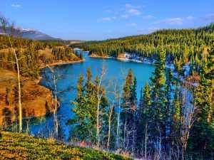 The Secret Language of Nature