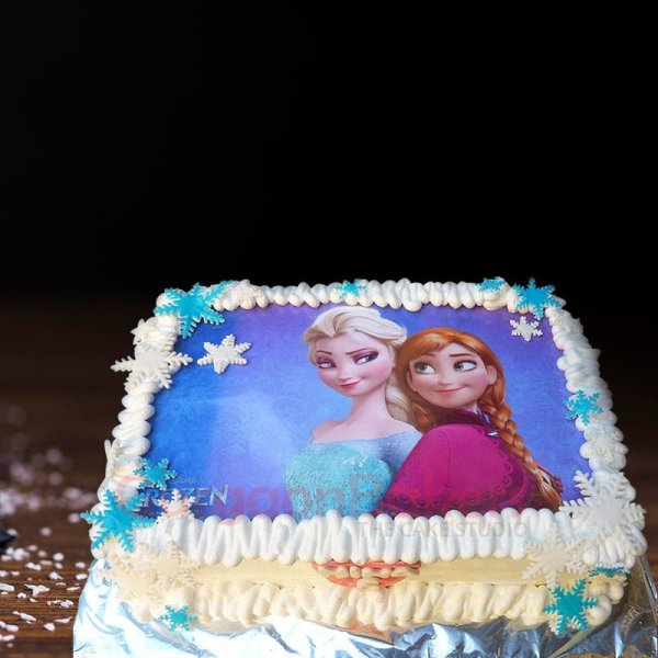 frozen fun cake