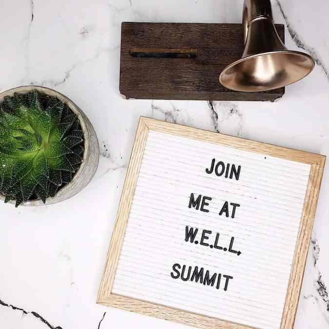 All About W.E.L.L. Summit 2017