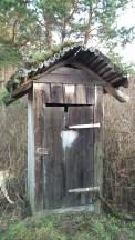 этот туалет стал просто украшением заднего двора