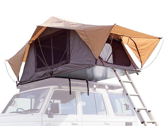 Roof-top Tent Ladder