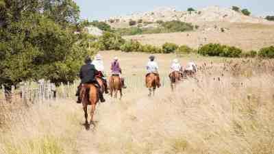 Haras Las Tordillas - horse-riding in Uruguay
