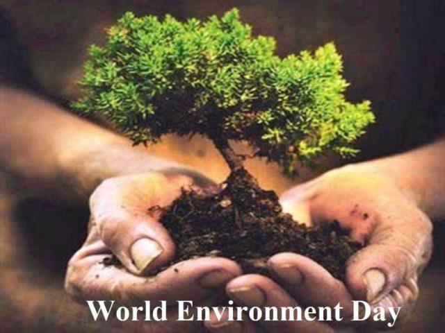 happy environment day