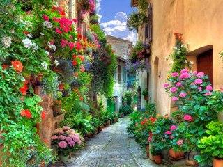 Как добраться до Италии