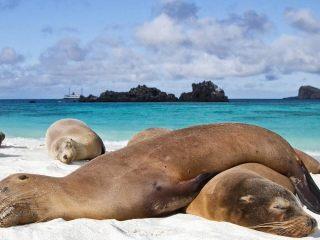 Как добраться до Галапагосских островов