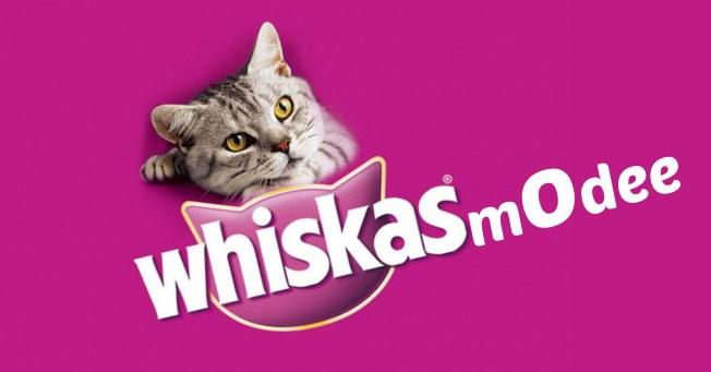 whiskasmodee