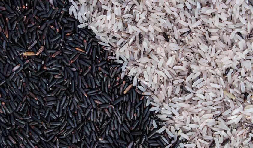 mencampur beras hitam dan beras putih