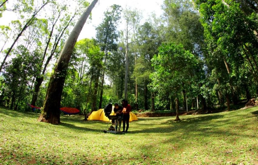 Mojosemi Camping