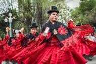 Desfile / Parade - La Paz