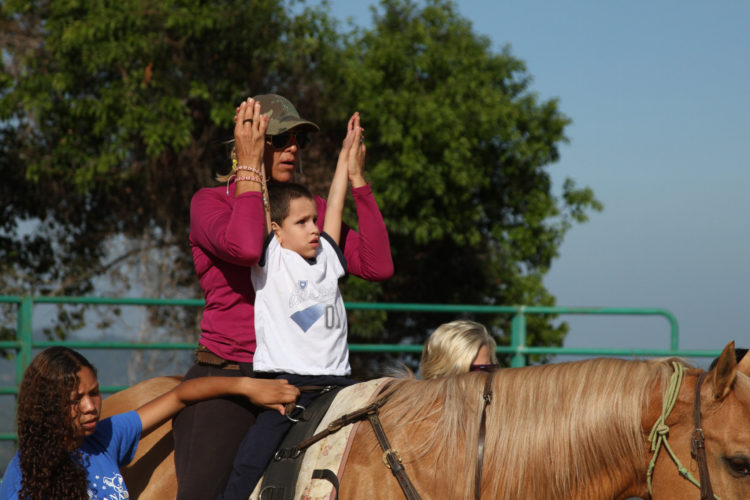 Safety in Equine Therapy