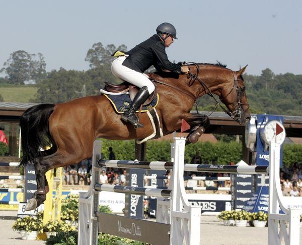 Show jumping rider