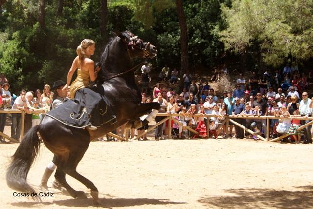 caballos bailadores