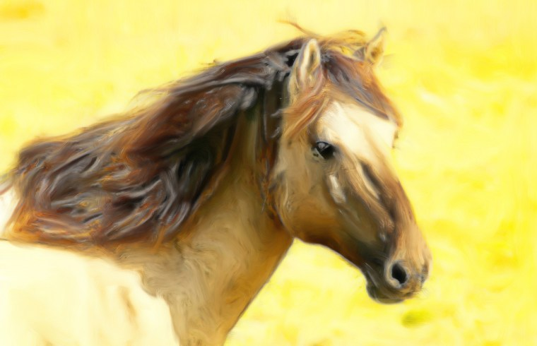 esartee Horse Digital Photo Painting by esartee [CC BY-SA 2.0 (https://creativecommons.org/licenses/by-sa/2.0/)]