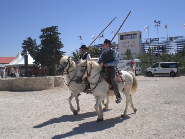 Gardians, Le Camargue