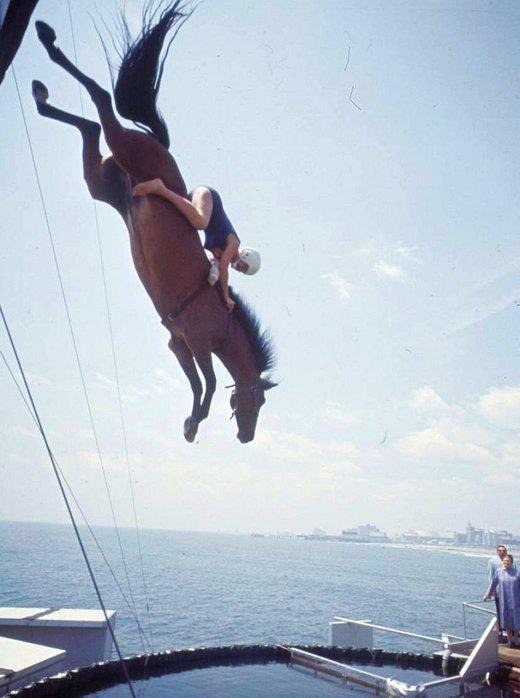 caballo clavadista