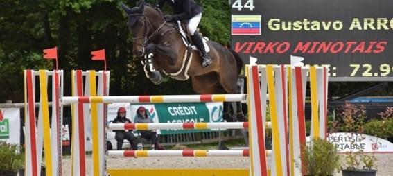 Caballo G&C Virko Minotais
