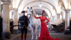 caballo y bailadores