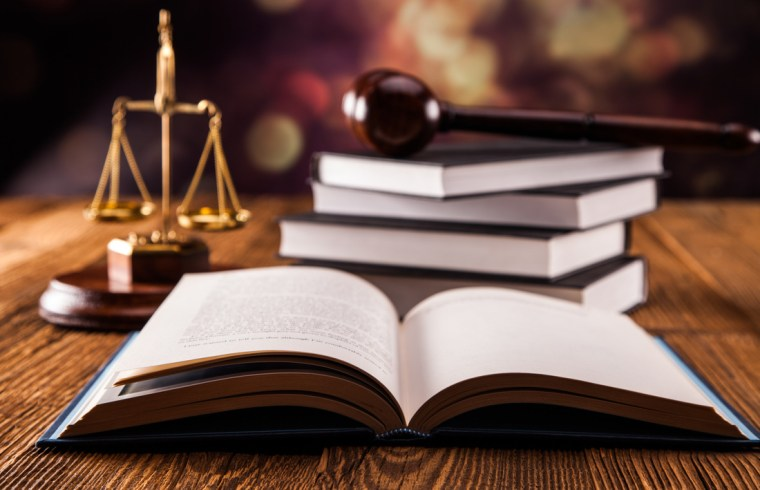 The Law Career: The Lawyer