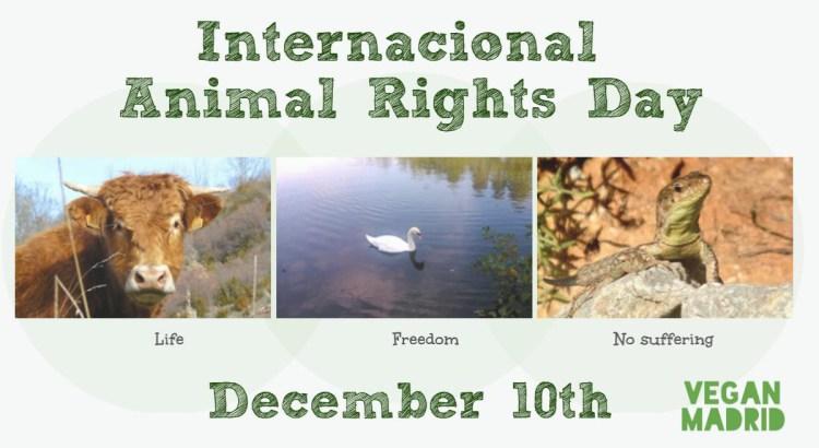 Internacional Animal Rights Day-Vegan Madrid Poster