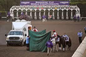 Muerte del caballo Mongolian Groom (Novio Mongol) luego de la competencia