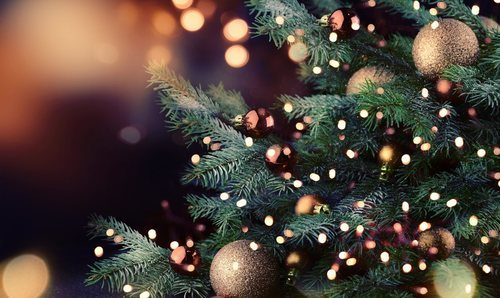 Christmas Three - Christmas Celebrations