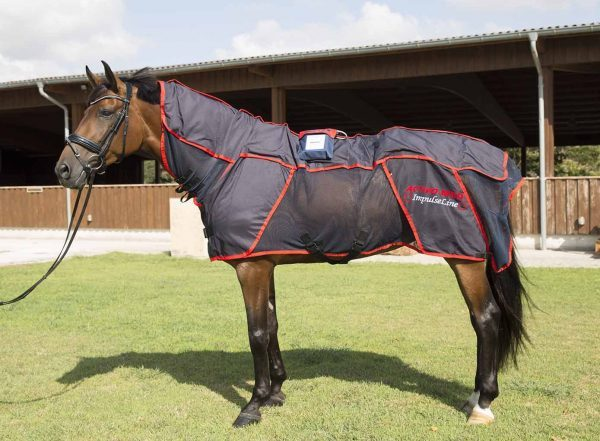 Massage blanket for horses - Equestrian gifts for Christmas