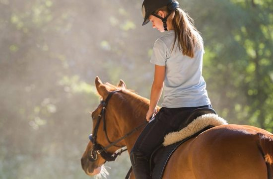 Tips to learn how to ride a horse - Gustavo Mirabal Castro