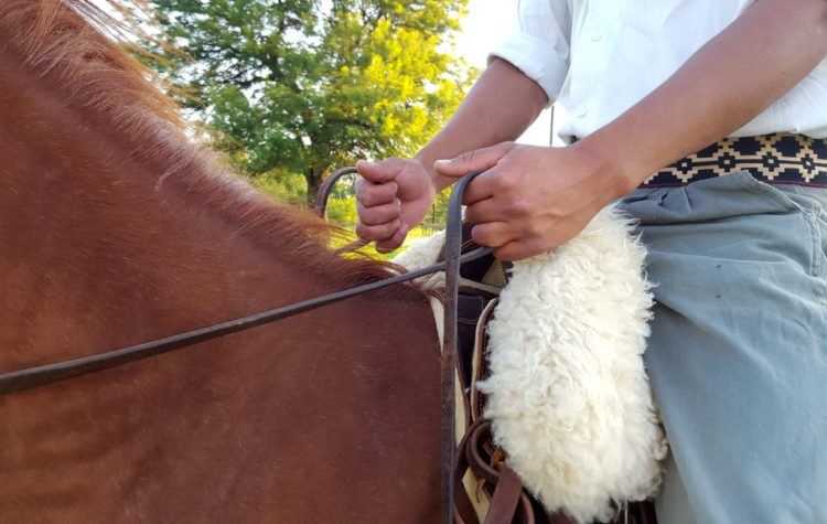 Tips to learn how to ride a horse