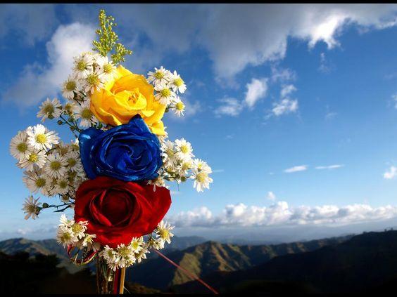 Venezuela Our Beloved Homeland
