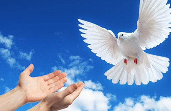 World Peace Day - January 1st
