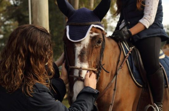 Essentials of equestrian safety