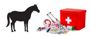 Primeros auxilios en los caballos