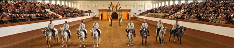 """Exhibición """"¿Cómo Bailan los Caballos Andaluces?"""""""